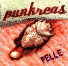 20 anni con la PELLE dura: Paletta dei PUNKREAS spiega la genesi dell'album che ha sublimato il punkitaliano